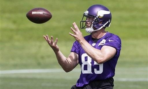 nfl Minnesota Vikings Rhett Ellison GAME Jerseys