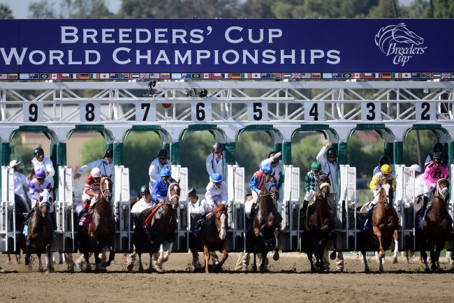 Breeders Cup 2013 Post Times Tv Schedule Weather