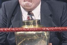 WWE/TNA: