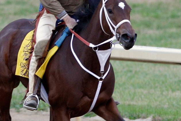 Eclipse Awards: Havre De Grace a Lock for Horse of the Year?