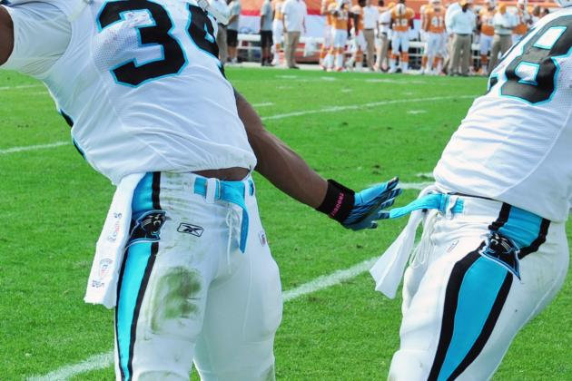 Carolina Panthers 2012 Offseason Preview: Running Backs