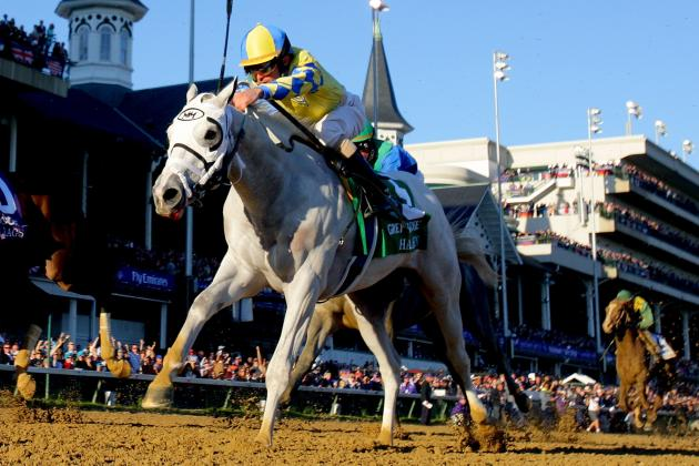 Eclipse Award Winner Hansen to Return at the Holy Bull Stakes