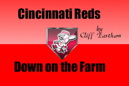 Cincinnati Reds Minor Profiles: Down on the Farm with Outfielder Bill Rhinehart
