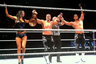 Royal Rumble 2012: Tag Team Titles and Others Missing from Card