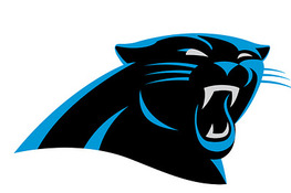 Carolina Panthers Survey: What Do You Think About the New Logo?
