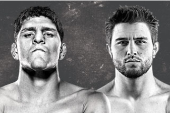 UFC 143 Results: Bonus Recap for Nick Diaz vs. Carlos Condit Fight Card