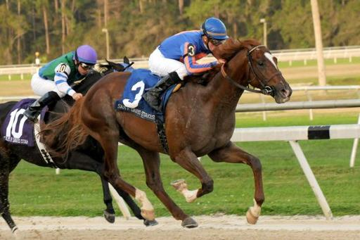 2012 Kentucky Derby Analysis Week 2: The Sam F. Davis Stakes