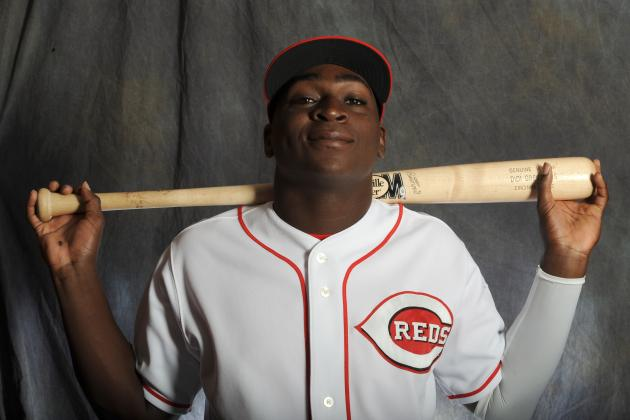 Cincinnati Reds: A Closer Look at Infield Prospect Didi Gregorius