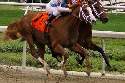 2012 Kentucky Derby Analysis Week 5: The Risen Star Stakes