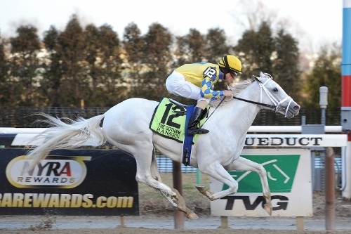 Blue Grass Stakes 2012: TV Schedule, Post Positions, Contenders and More