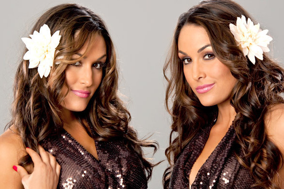 WWE News: Latest Update on the Bella Twins' Status with Company