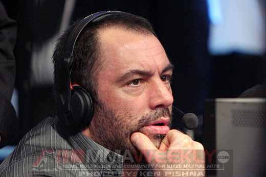 Joe Rogan: Commentating King or Court Jester?