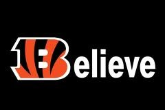 Why the Cincinnati Bengals Can Win the AFC North Title in 2012