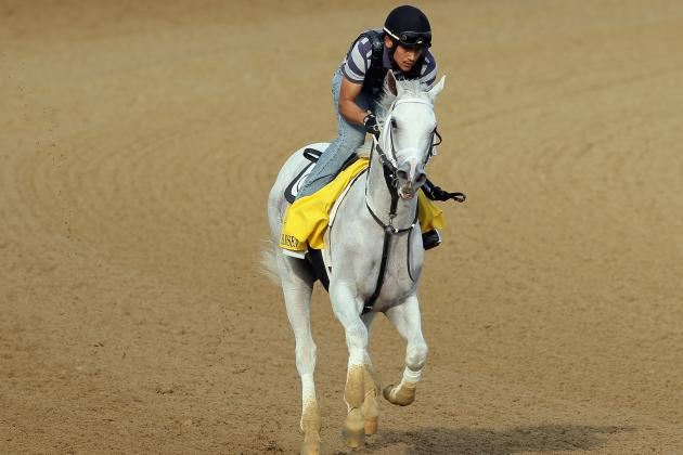 Kentucky Derby 2012 Horses: Most Intriguing Contenders in the Field