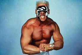 WWE Needs WCW's Sting, but Do They Need TNA's Steve Borden?