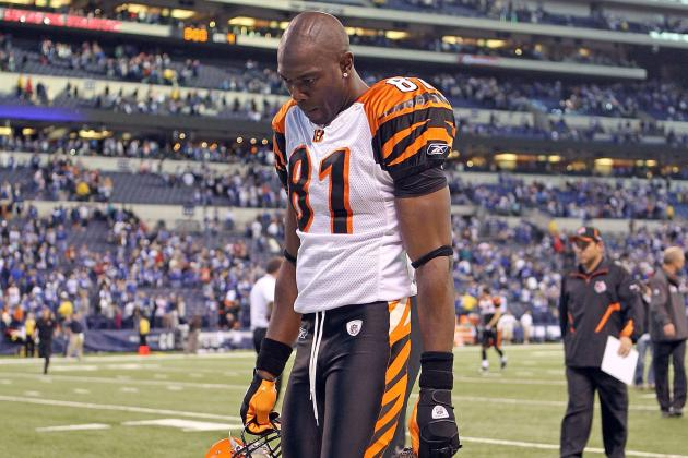 NFL Free Agency: Will Terrell Owens Ever Play in the NFL Again?