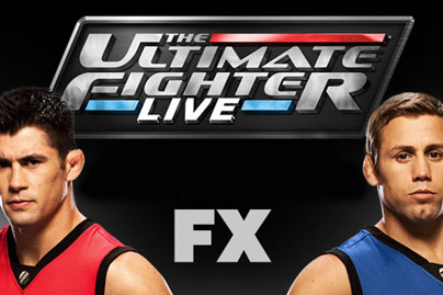 Why the UFC Should Never Get Rid of the Ultimate Fighter