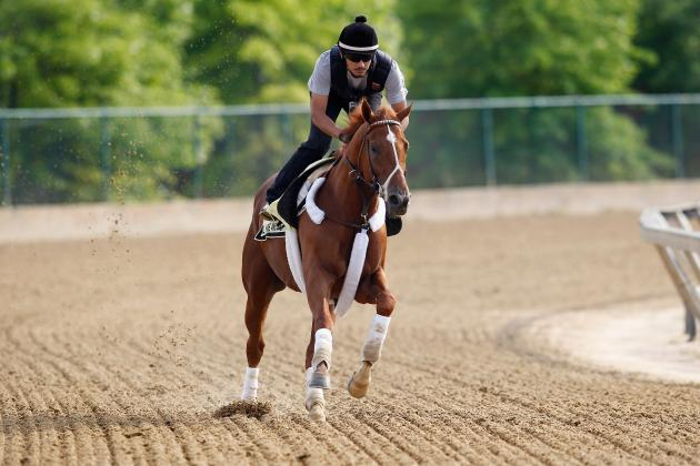 2012 Preakness Stakes Betting Advice:  I'll Have Another