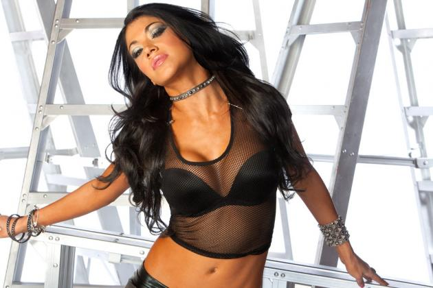 WWE News: Update on the Car Accident Involving WWE Diva Rosa Mendes Friday