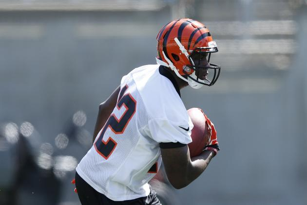 Mohamed Sanu Becoming a Favorite of Bengals' Coach, Players and Fans