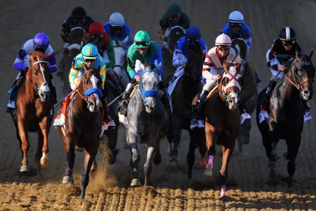 Belmont Stakes 2012 Odds: Early Betting Odds for Field