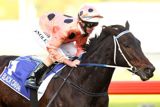 Black Caviar Looking to Deliver More Australian Sprinting Success at Royal Ascot