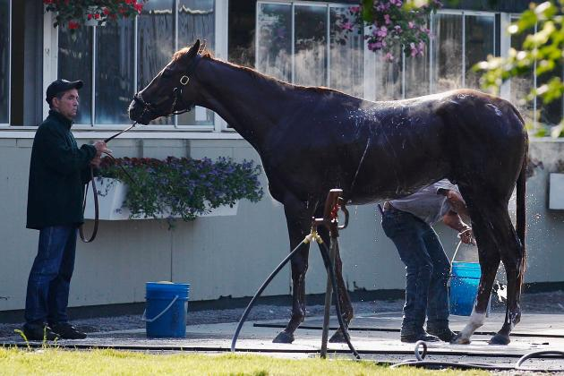 Dullahan Trainer: Belmont Barn Situation 'Ridiculous'