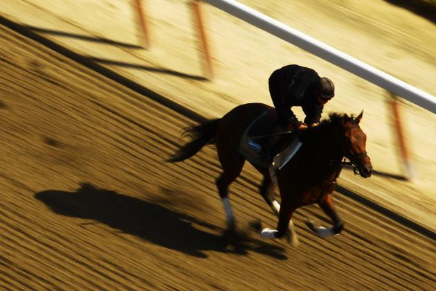 Belmont Stakes Odds: Horses That Will Make Late Push for Win