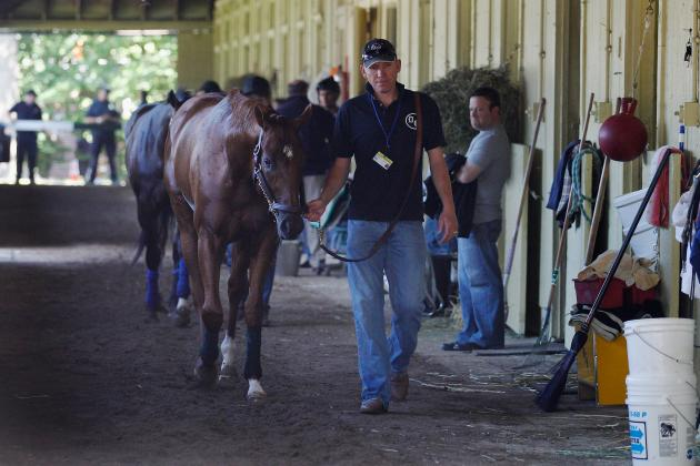 I'll Have Another Torn Tendon: Tragic Injury Benefits Horse Racing in Long Run