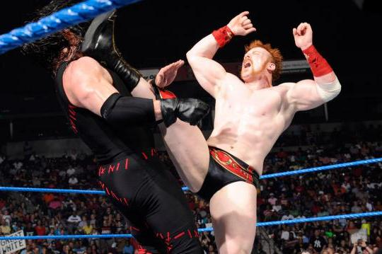 WWE SmackDown: Sheamus vs. Kane, Christian vs. Ziggler, Brodus Clay and More