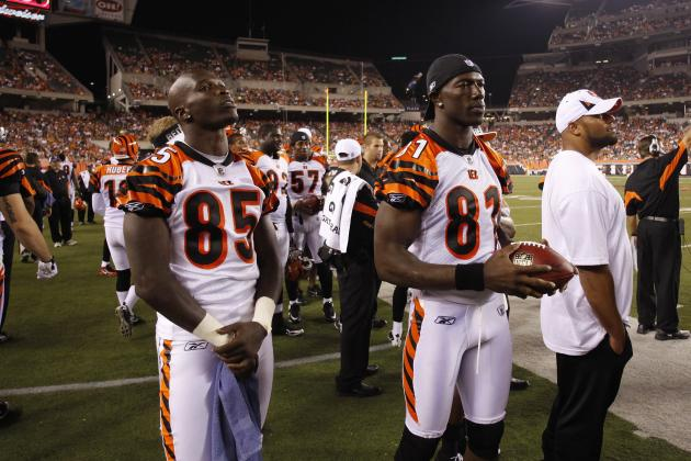 Chad Ochocinco vs. Terrell Owens: Who Deserves a One-Year Deal More?