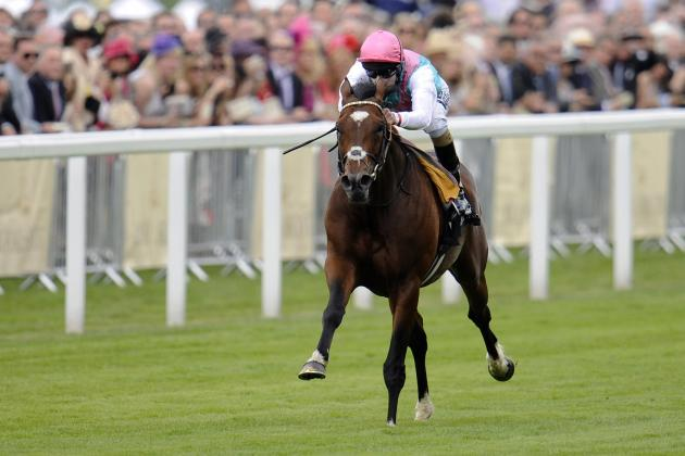 Horse Racing Dominance Is Measured by Wins and Wins Only