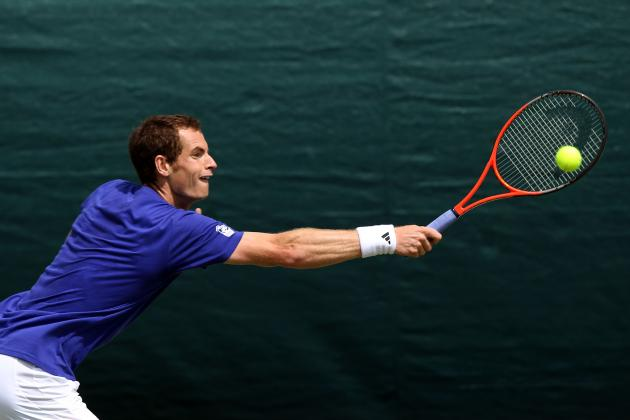 Wimbledon 2012: Dark Horse Candidates with the Best Chance to Unseat Djokovic