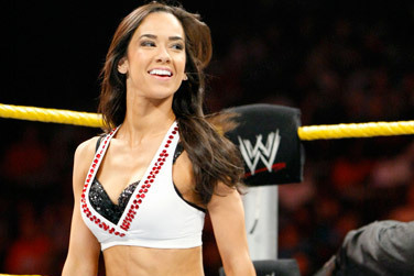 AJ Lee's Rise and the WWE