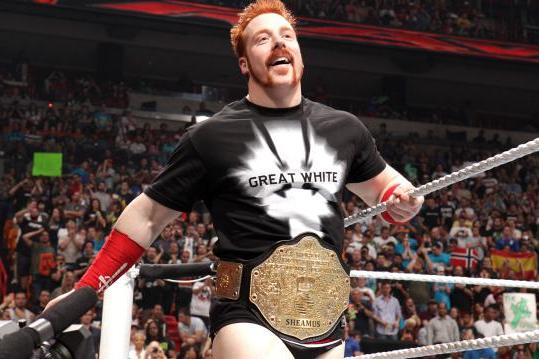 WWE SummerSlam: Who Should Challenge Sheamus for the World Heavyweight Title?