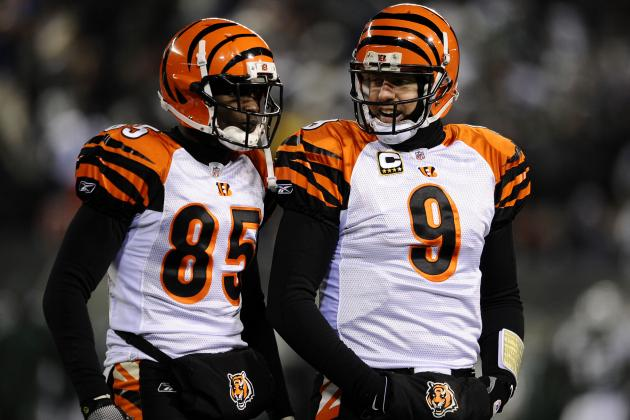 Cincinnati Bengals: How Should Fans React to Chad Johnson and Carson Palmer?