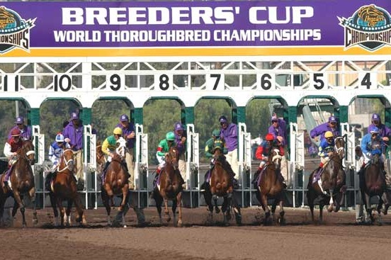 Santa Anita Named Host of 2013 Breeders' Cup