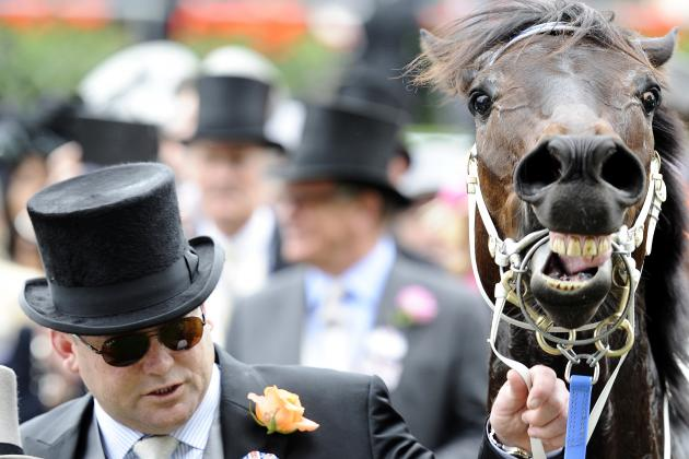 Will Frankel and Black Caviar Breed Superhorses?