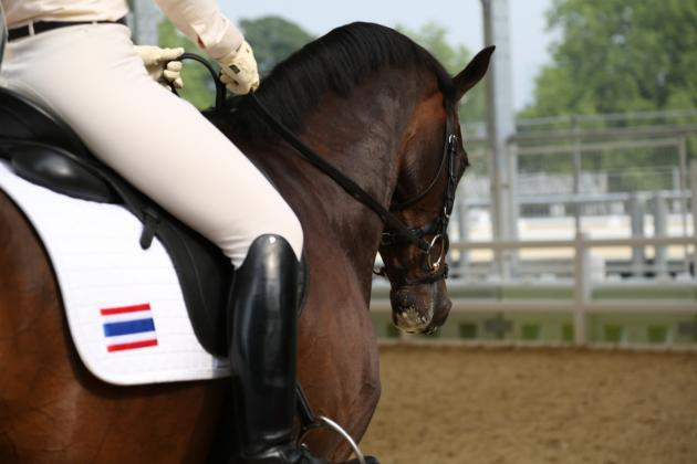Road to the Olympics: Nina Ligon, Equestrian