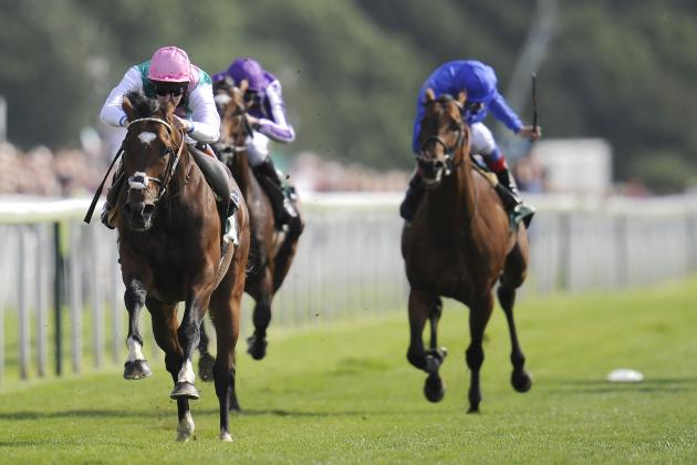 Greatest Ever? Frankel Shines in Juddmonte International Against BC Turf Winner
