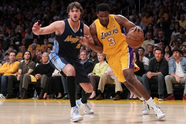 Los Angeles Lakers: What Can the Future Hold for Devin Ebanks?