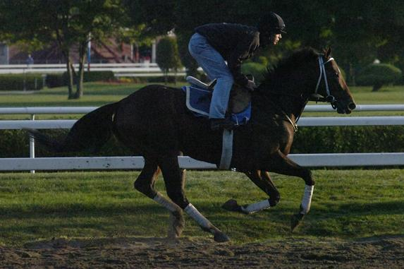 Travers Stakes 2012: Golden Ticket's Performance in Saratoga Is a Fluke