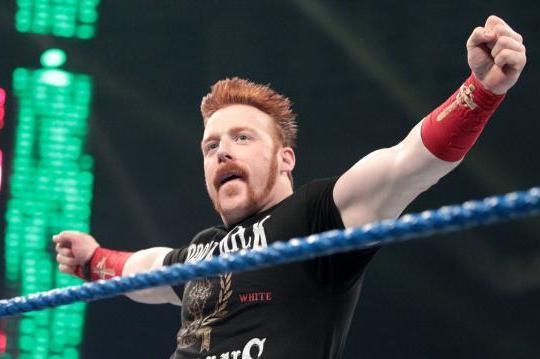 WWE: Can Sheamus Realistically Be WWE's Next John Cena?
