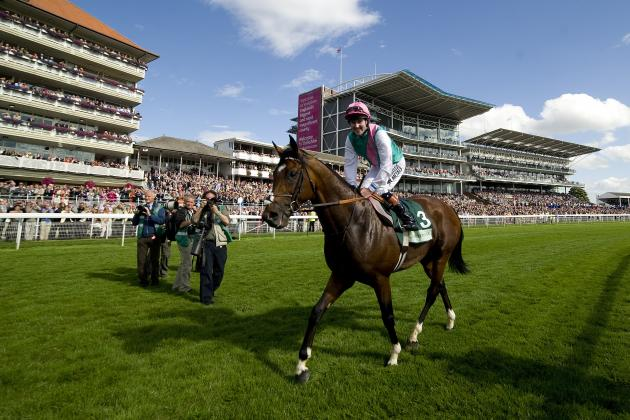 Frankel's Final Race Will Not Answer Greatest-Ever Questions