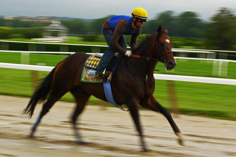 Paynter Takes Turn for the Worse on Monday