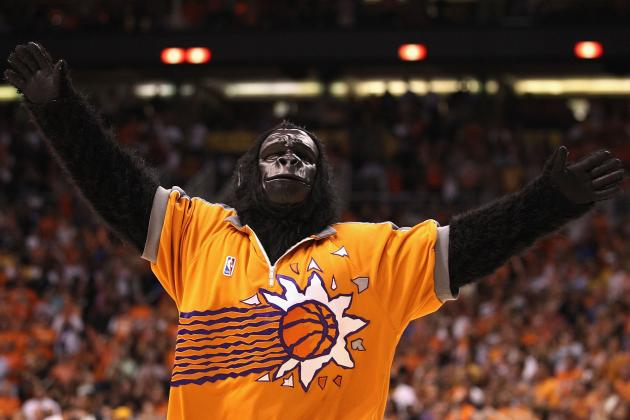 You Could Be the New Suns Gorilla