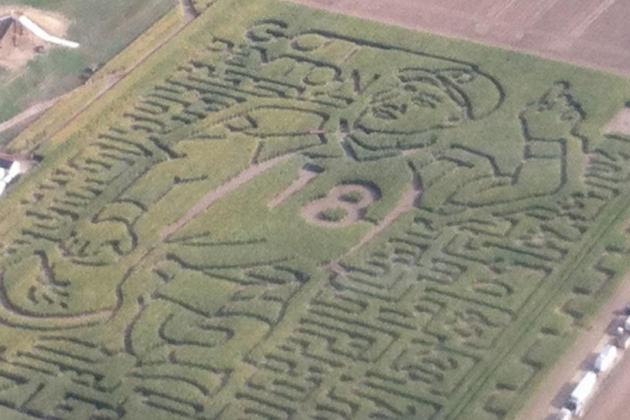 Peyton Manning Corn Maze