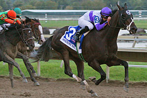 Pennsylvania Derby: Handsome Mike Wins as the Longest Shot on the Field