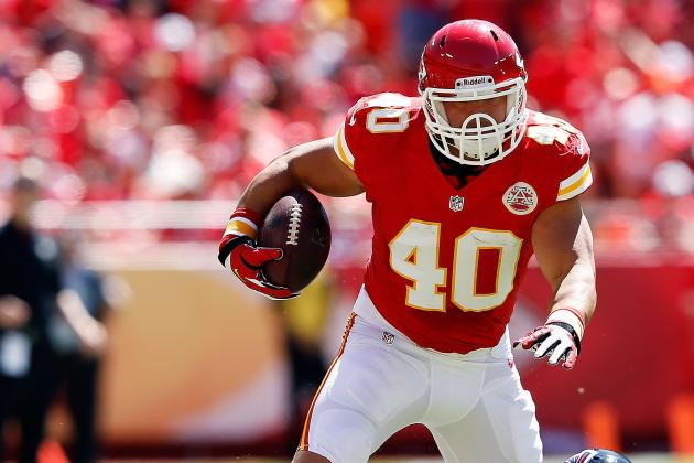 Peyton Hillis: Updated Fantasy Football Profile, Outlook After McCluster Injury