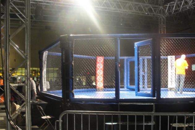 Professional Mixed Martial Arts in New York State: Gladius Fight Promotion Debut